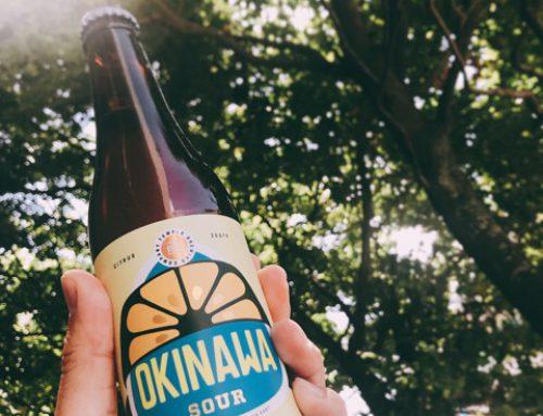 今年の夏「OKINAWA SOUR」は如何でしょうか?